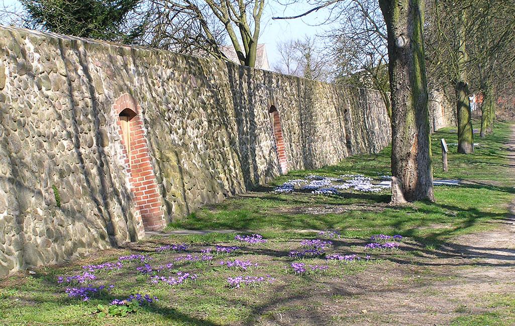 Altlandsberg Stadtmauer