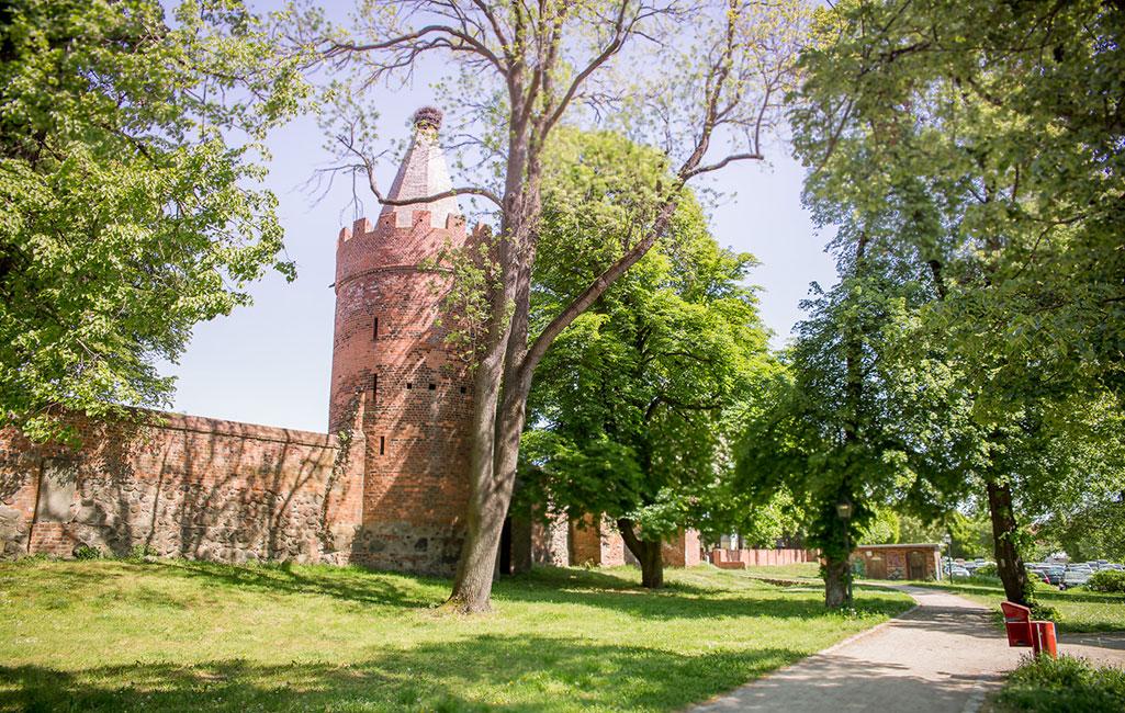 Angermünde, Stadtmauer mit Pulverturm, 2018 Stefan Klenke